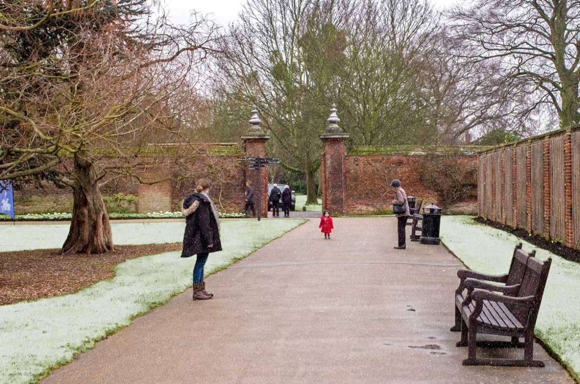 Hampton Court 2015