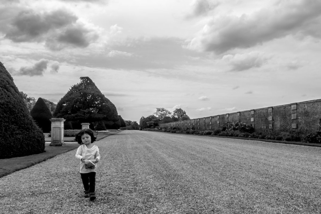Hampton-Court-Palace-IMGP1188