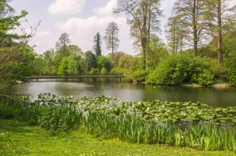 Kew-Gardens-IMGP1247