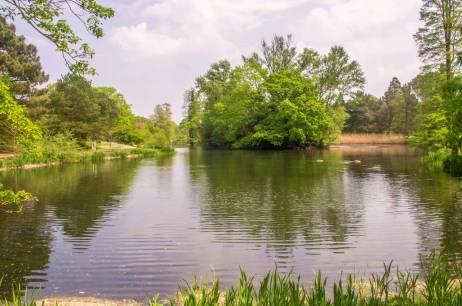 Kew-Gardens-IMGP1259