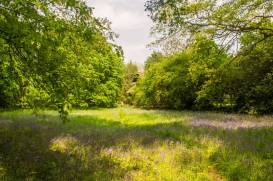 Kew-Gardens-IMGP1264