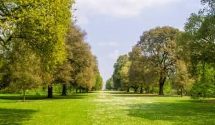 Kew-Gardens-IMGP1271