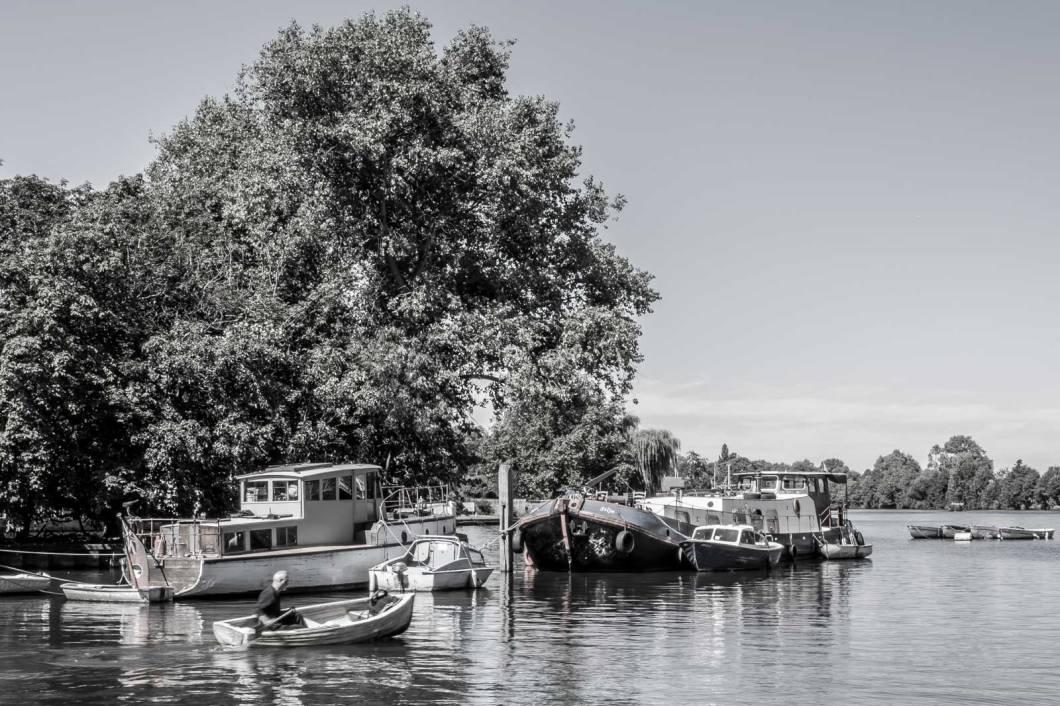 Thames@Kingston-IMGP2069