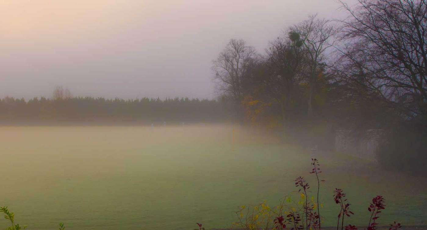 mist-imgp2566