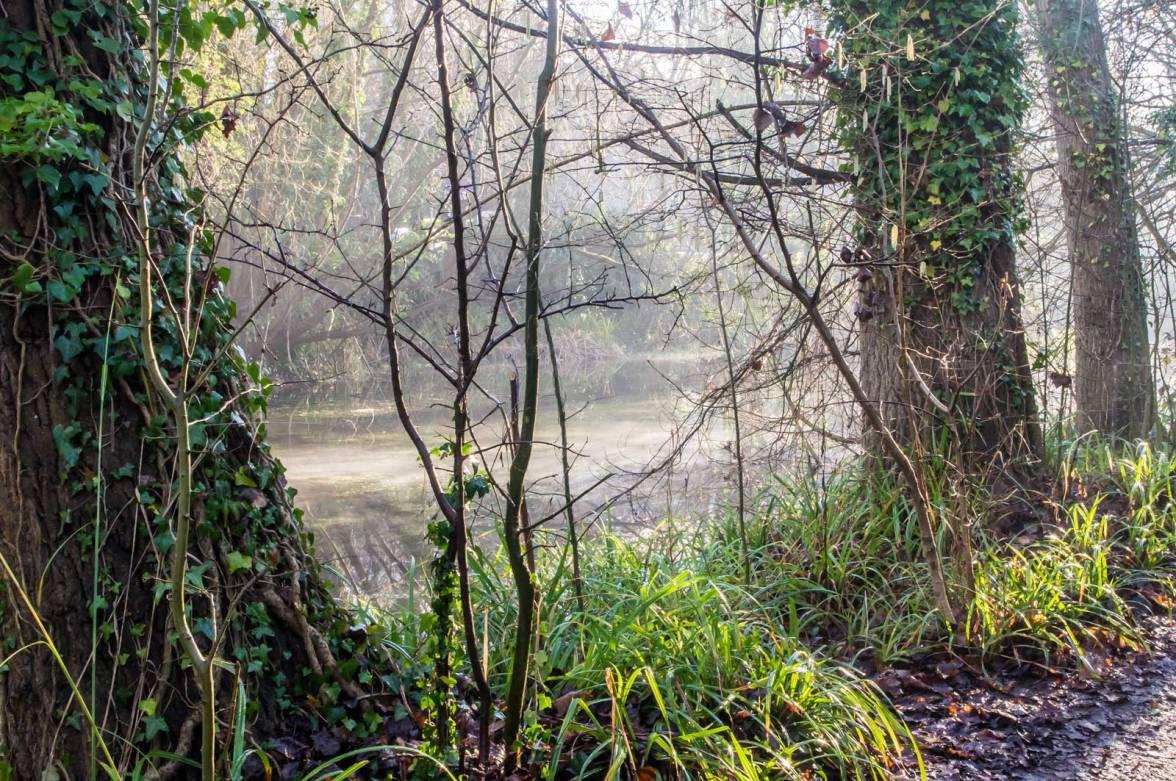 ewell-hogsmill-river-imgp2675