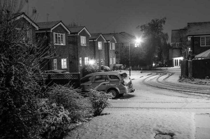 snow-january-2017-imgp2739