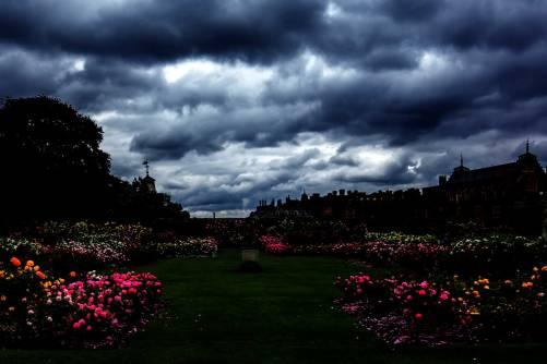 Hampton-Court-DSC01177
