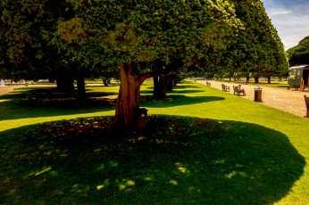 Hampton-Court_0120