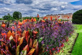 Hampton Court DSC02126