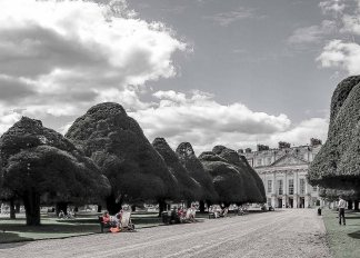 Hampton Court DSC02140
