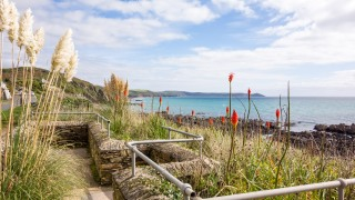 Cornwall Oct2017_0227