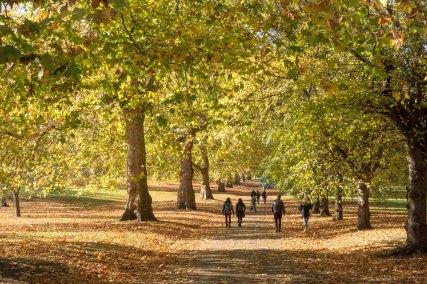 London parks_0022