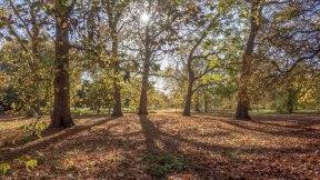 London parks_0034