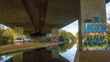 River Wey 03