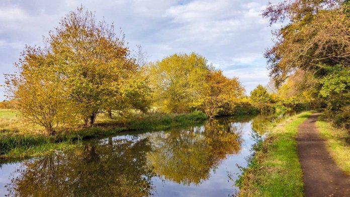 River Wey 07