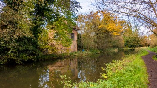 River Wey 11