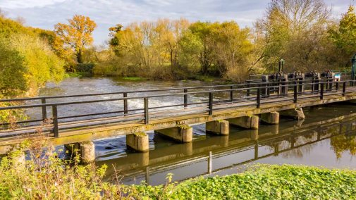River Wey 14