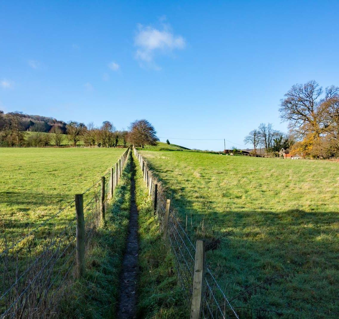 Westhumble walk_0014