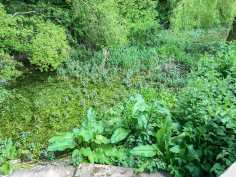 Possibly the source of the River Itchen