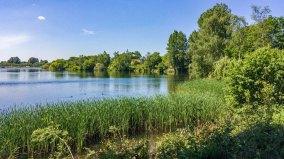 Lake near Ripley